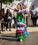 Flamenco tancerza uśmiech Obraz Stock