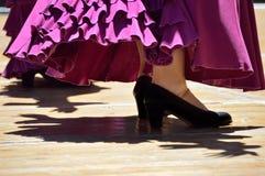 Flamenco tancerzy nogi Obraz Stock