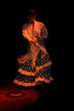 flamenco1 αρχικός στοκ εικόνες