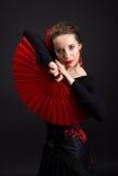 Flamencodanser Royalty-vrije Stock Foto