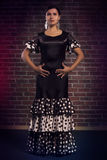 Flamencodanser in mooie klassieke kleding Stock Foto's