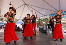 Flamencodansers Royalty-vrije Stock Foto