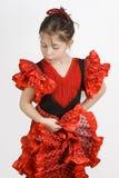 flamencoflicka Royaltyfri Fotografi
