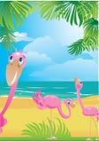 Flamencos en la playa tropical hermosa ilustración del vector