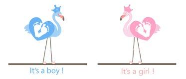 Flamencos Impresiones del pie del bebé El género del bebé revela Bebé girl illusytration con las nubes, el sol y el cochecillo Ta Foto de archivo libre de regalías
