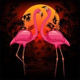 Flamencos rosados en el ejemplo tropical caliente del vector de la puesta del sol libre illustration