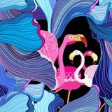 Flamencos rosados y abstracción Foto de archivo