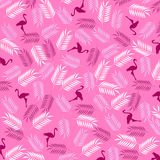 Flamencos y hojas del helecho en fondo rosado imagen de archivo