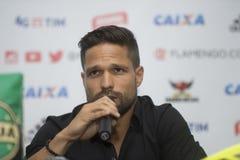 Flamengo Fotografering för Bildbyråer