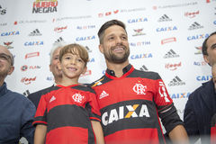Flamengo Arkivfoton