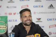 Flamengo Arkivfoto