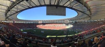Flamengo Lizenzfreie Stockbilder