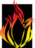 Flamens un fond noir. Illustration Stock