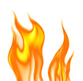 Flames. On a white background Royalty Free Stock Images