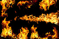 Flames. On a black background Royalty Free Stock Images