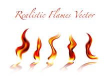 Flames. Realistic flames  on white background Royalty Free Stock Photo
