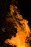 Flames. Large fire flames on black background Royalty Free Stock Images