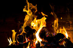 Wood burning on a fire Royalty Free Stock Image