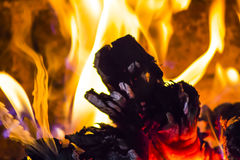 Wood burning on a fire Royalty Free Stock Photo