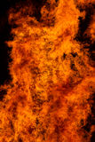Flames of big fire Stock Image