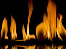 Flames. On a black background Stock Photos