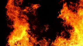 Flames of a bonfire. stock footage