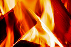Flames burn in a fire. Close up of orange and red flames burning on a fire with logs Royalty Free Stock Photography