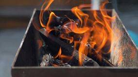 Flames Burning in a BBQ. Close-Up of Burning Charcoals and Firewood with Flames in the Brazier. Preparing for Barbecue Party in the Garden in Summer. Leisure stock video