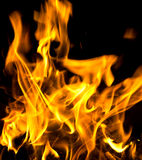 Flames of burning fire isolated Stock Image