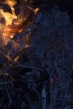 Flames of Burning Wood Royalty Free Stock Photos