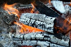 Flames of a campfire Royalty Free Stock Photo