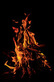 Flames of a campfire Stock Photography