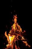 Flames of a campfire Stock Photos