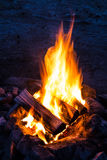 Flames of campfire stock photography