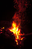 Flames of a campfire in the night Royalty Free Stock Images