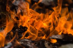 Flames caused by combustion. This photo can be combined with your activities such as fire prevention activities. - I like the feel of this, might be something l Royalty Free Stock Image