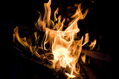 Flames. A close up of the flames of a campfire Royalty Free Stock Photos