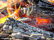 Flames and coals. In a fire Royalty Free Stock Photography