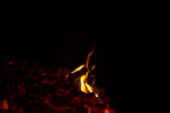 Flames from the coals Stock Photos