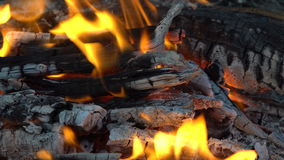 Flames and coals in the fire stock video footage