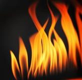 Flames. Dancing flames canon clicks Stock Photo