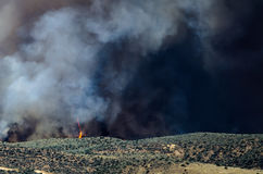 Flames and Dense White Smoke Rising from the Raging Wildfire Royalty Free Stock Photography