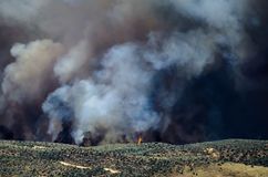Flames and Dense White Smoke Rising from the Raging Wildfire Stock Image