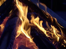 Flames entwining. Around a burning log Stock Image