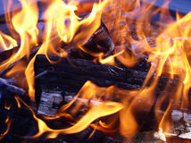Flames entwining around wood. Flames entwining around burning logs flames on wood in a backyard - macro Royalty Free Stock Images