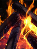 Flames entwining around wood. Flames entwining around burning logs flames on wood in a backyard - bonfire type setting Stock Image