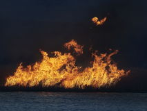 Flames on field during fire. Big flames on field during fire Royalty Free Stock Photo