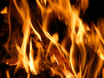 Flames or fire Stock Image