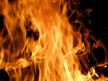 Flames or fire. Homogeneous structure or wall-paper. Flames or fire for background Stock Image