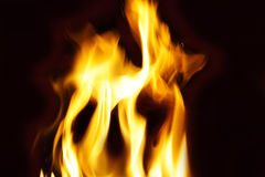 Flames and Fire. Bright yellow flames from a fire on black Royalty Free Stock Image